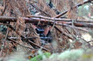 Aufklärungstraining: Während einer Wasserinfiltrations-Übung am 30. März 2015 auf dem Militärsützpunkt Adazi in Lettland mit lettischen und kanadischen Aufklärungsteams sichert ein US-Soldat hinter einem Sichtschutz. Bild: DoD